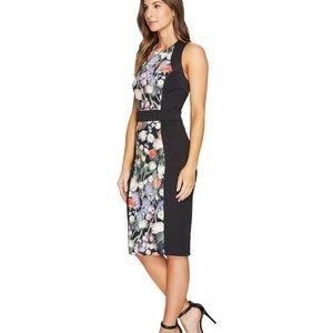 Ted Baker Akva Kensington Floral Dress